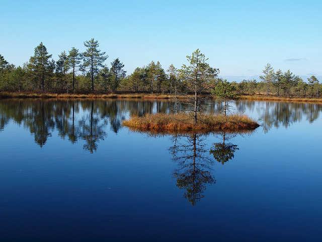 Pure Estonian Island Beauty