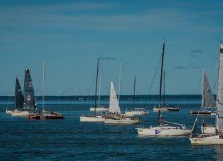 Yachts on Parnu Bay