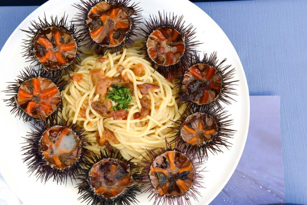 Sardinian cuisine, spaghetti with sea urchin;