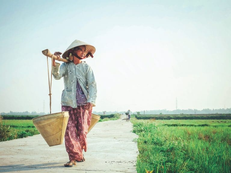 Your Best-Value Insider Guide to Discovering Vietnam, from Experiences to Accommodation